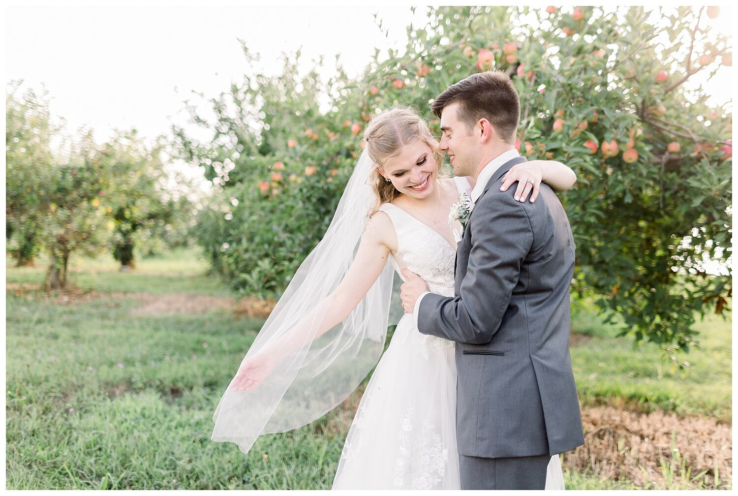 wedding photos in an apple orchard