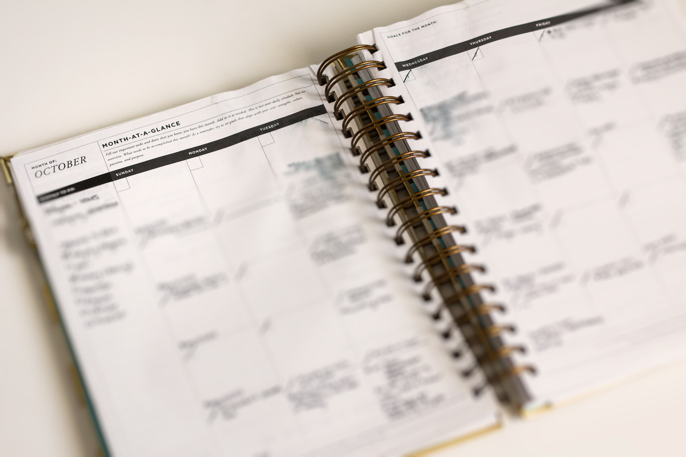 amanda-diane-whitney-english-planner-review-monthly