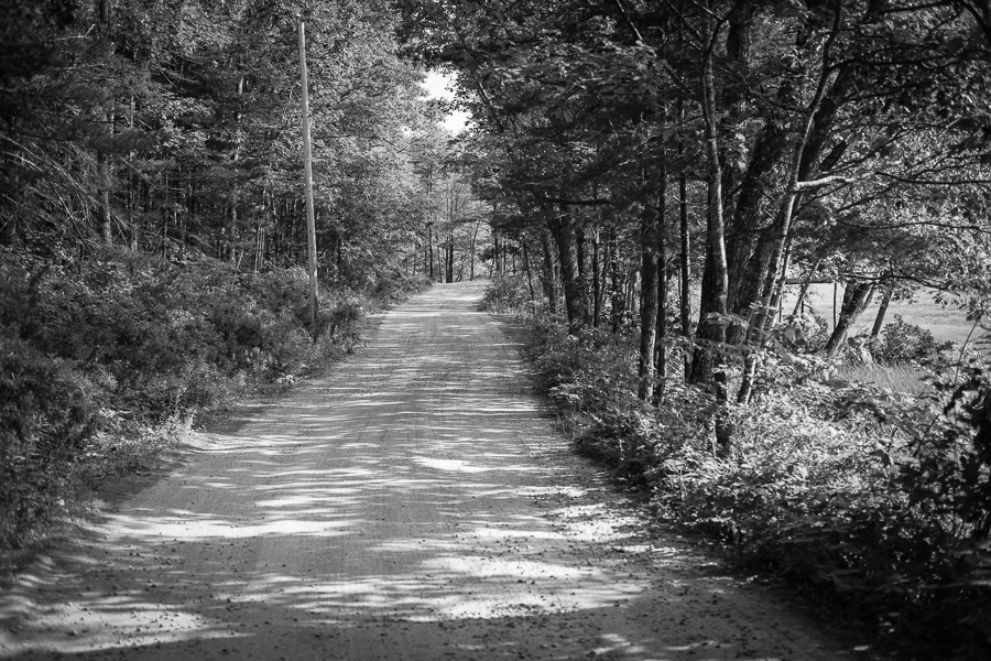 black and white daze in maine blog-3.jpg