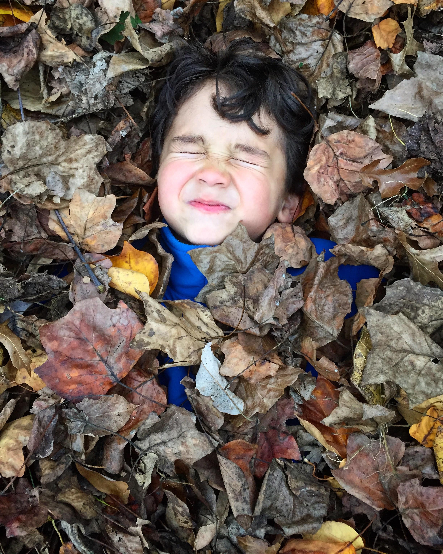 Liam Fall.jpg
