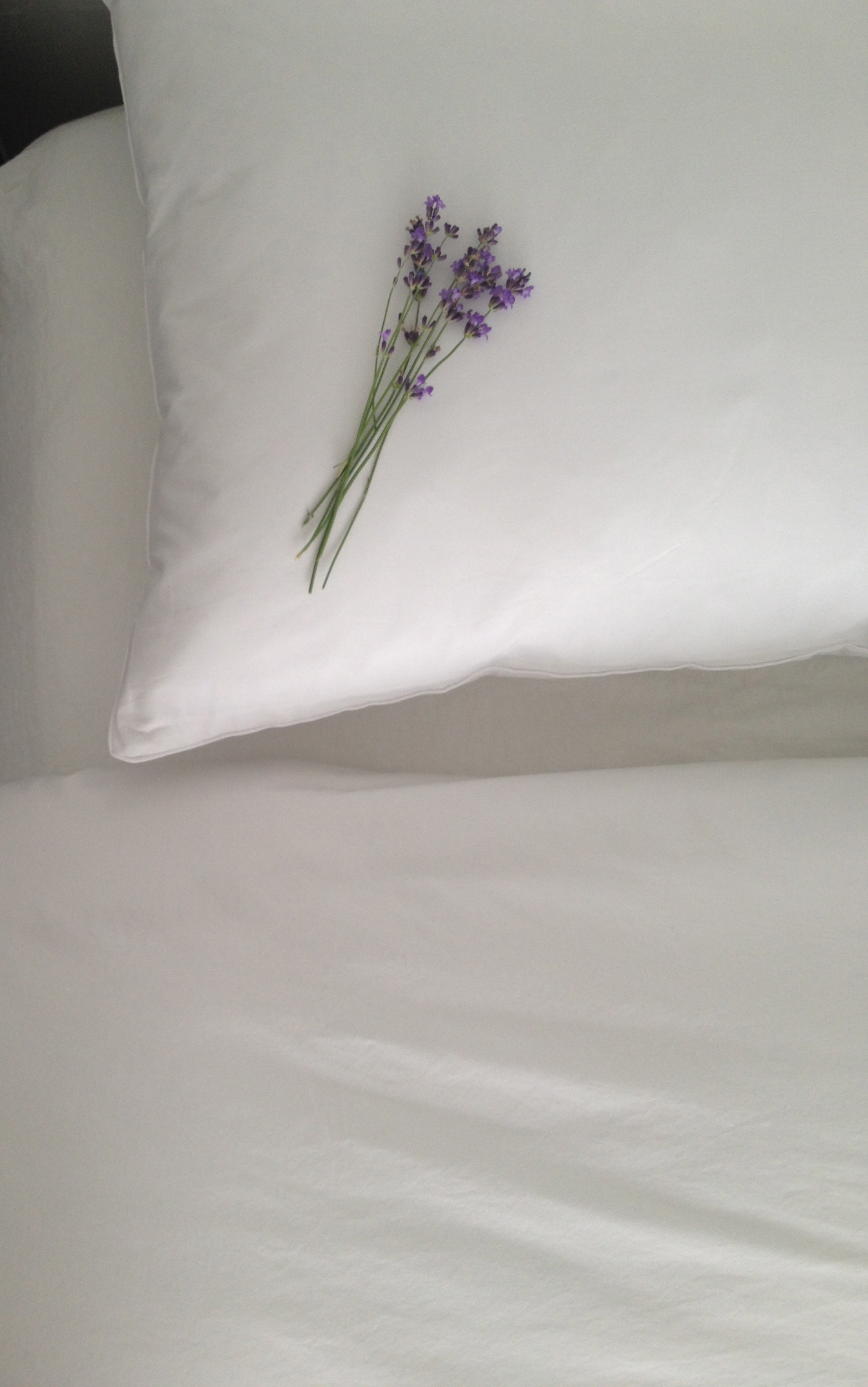 Duvation_white duvet cover_Lavender.jpg