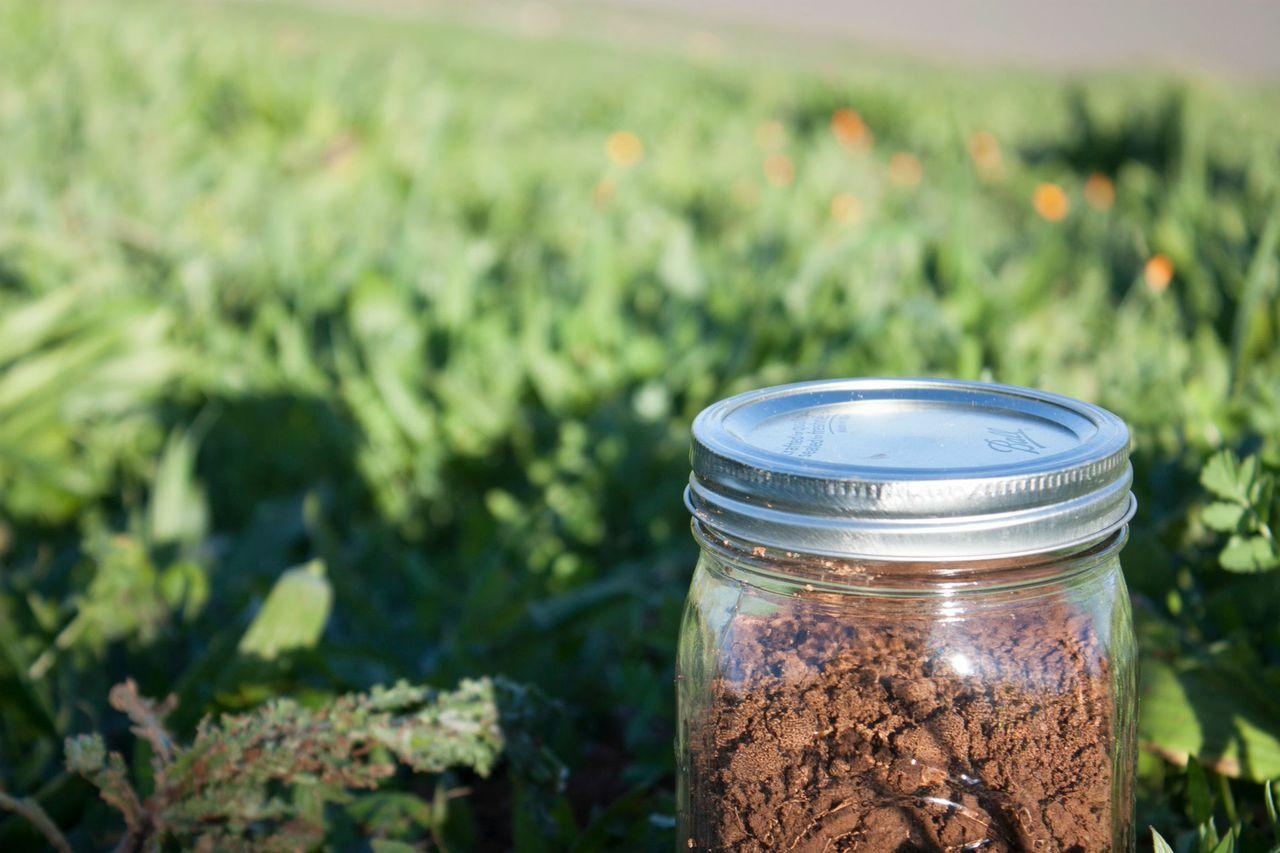 jar-of-soil-for-sampling.jpeg