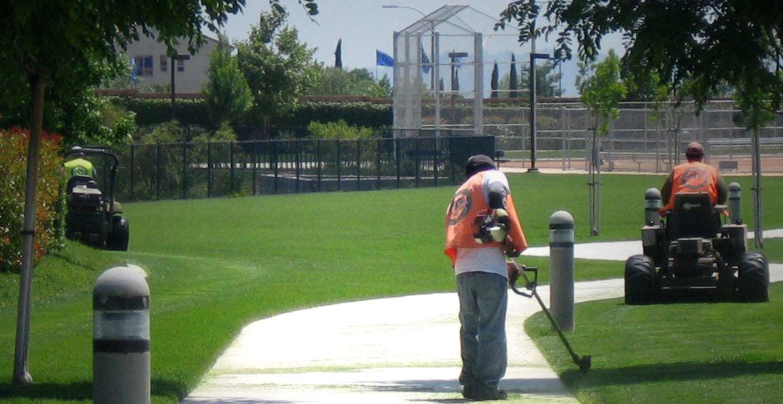 Abelia Sports Park - Winchester CA