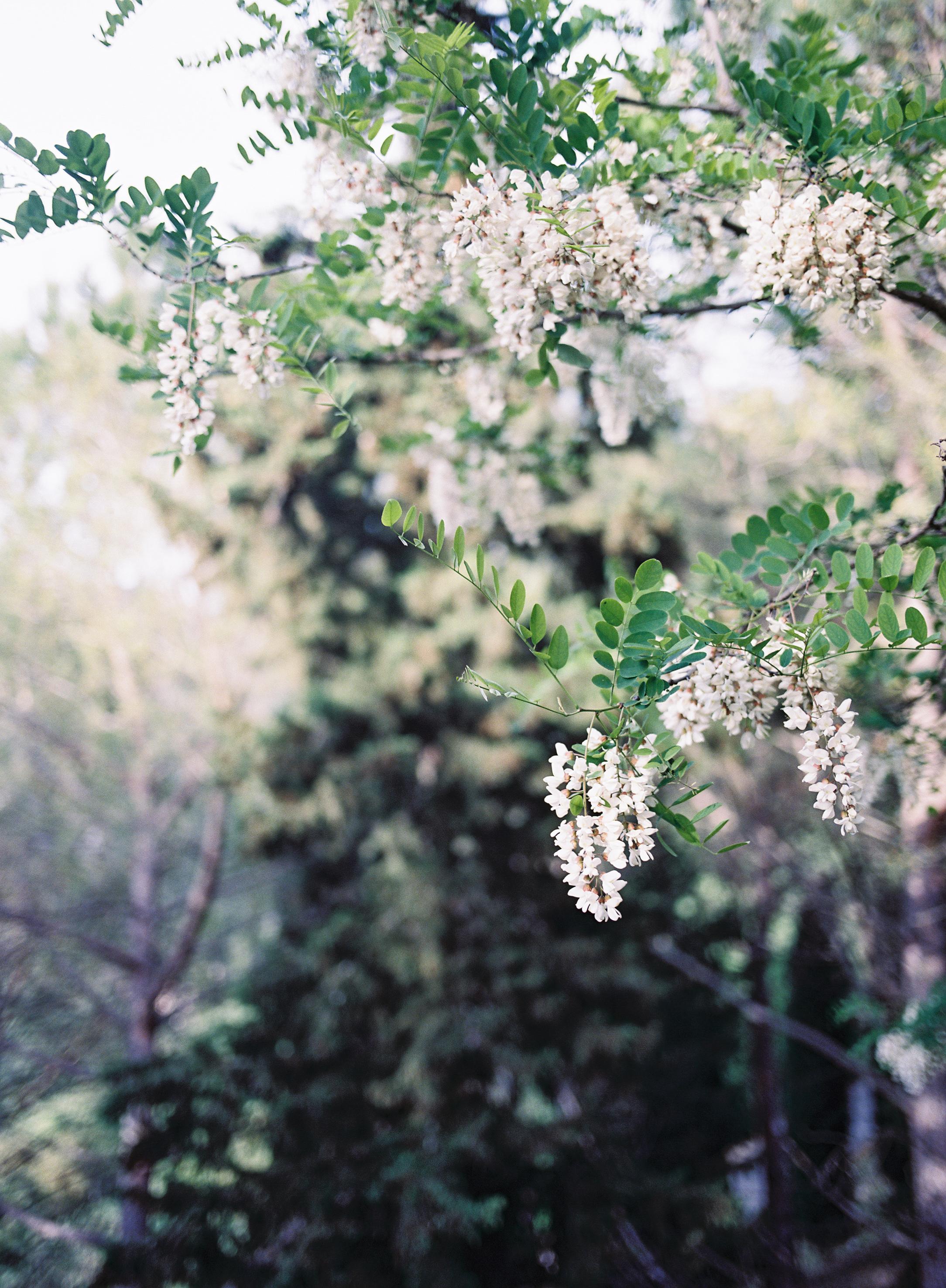 Jen_Wojcik_Photography-34.jpg
