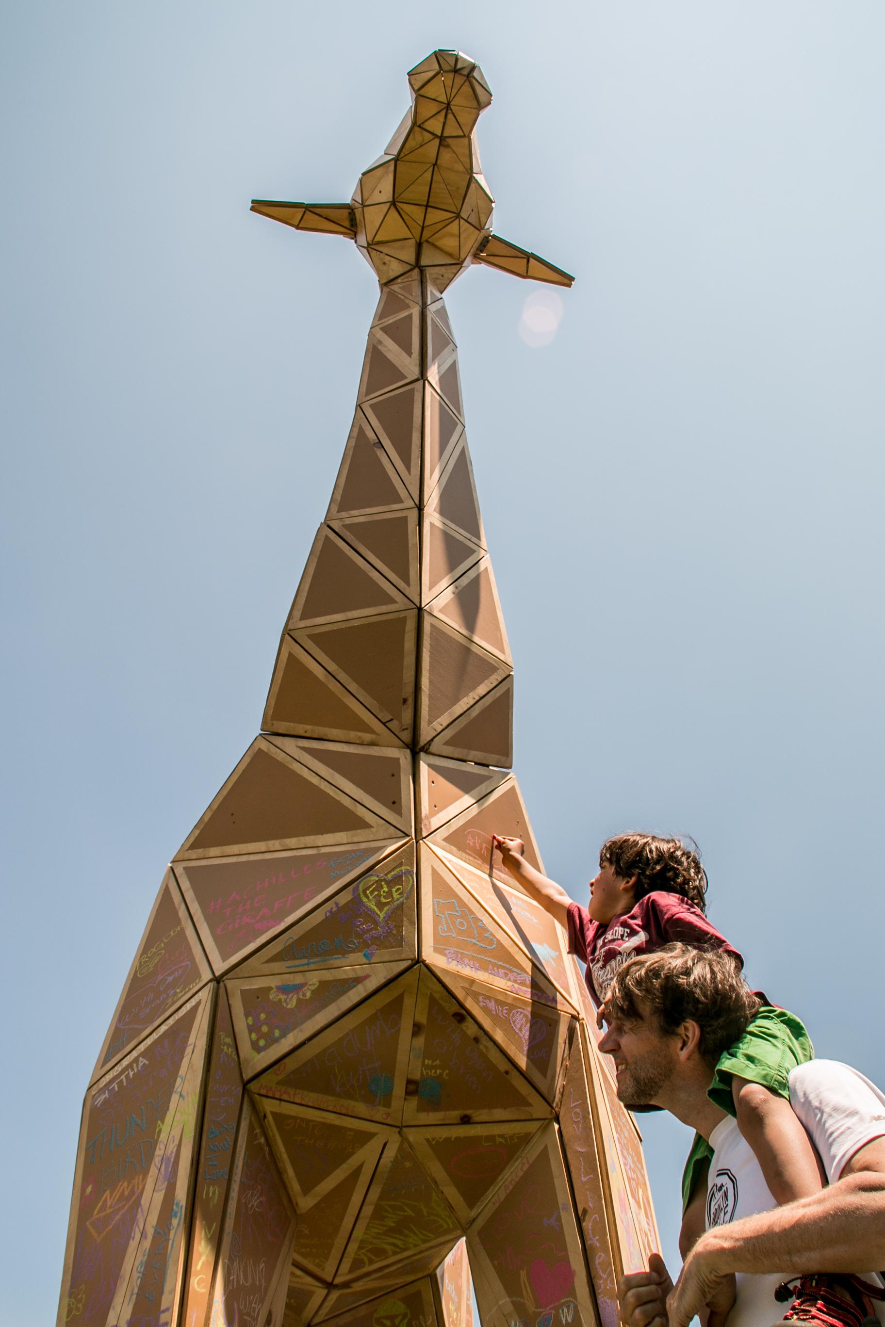 achilles the giraffe  (23 of 49).jpg