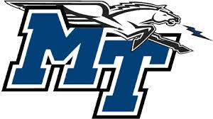 Middle Tennessee State University RN to BSN Nursing School