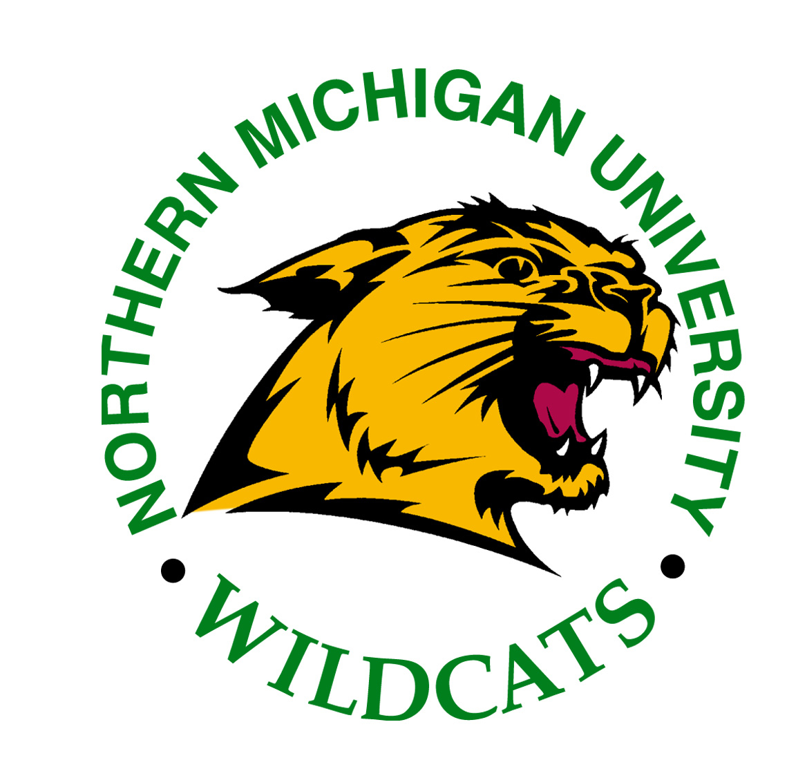 Northern Michigan University BSN Nursing School