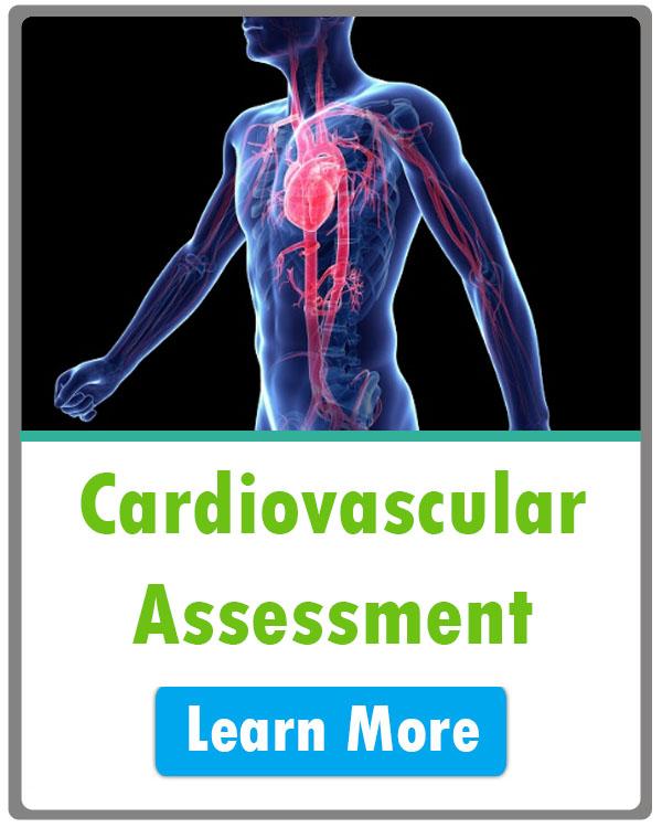 nursing cardiovascular assessment