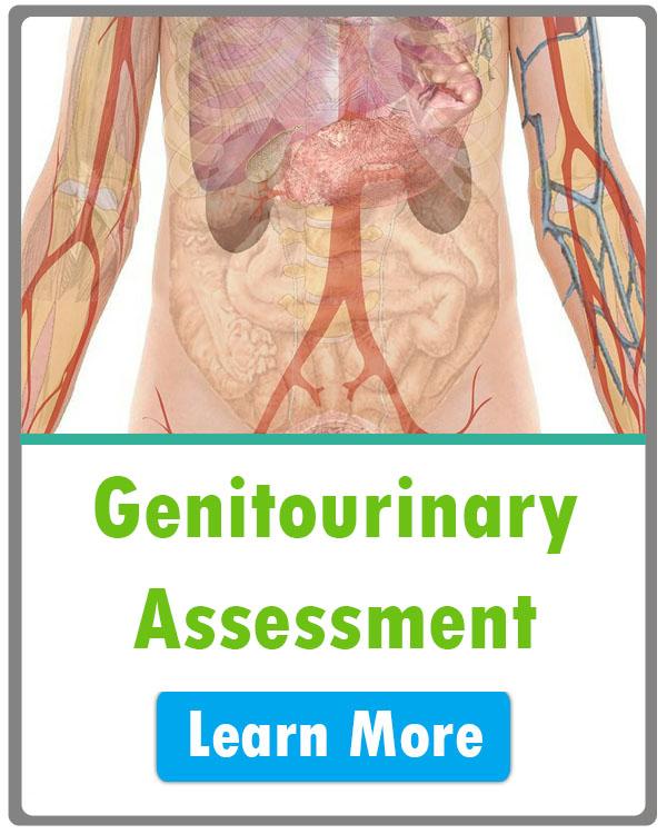 Nursing GU Assessment