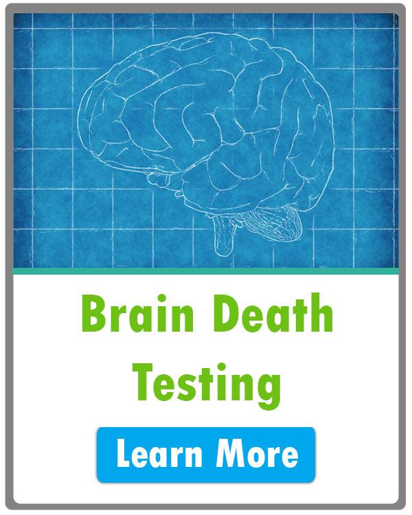 brain death testing