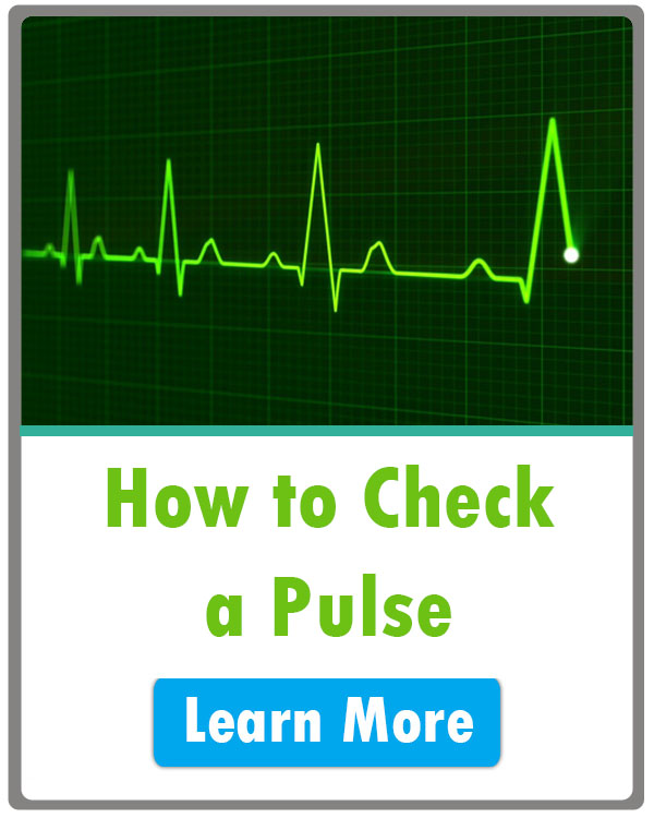 how to check a pulse