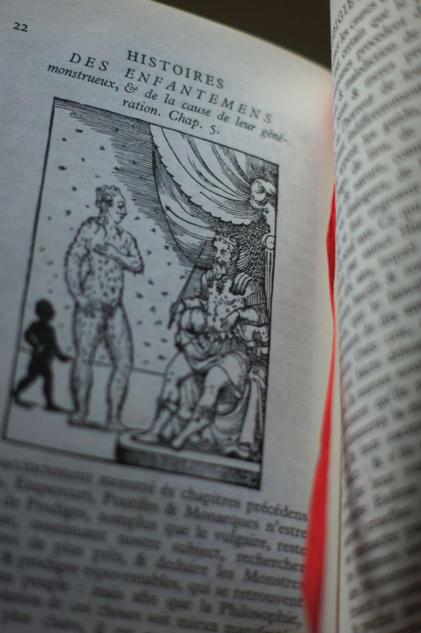 Histoires prodigieuses, 1560