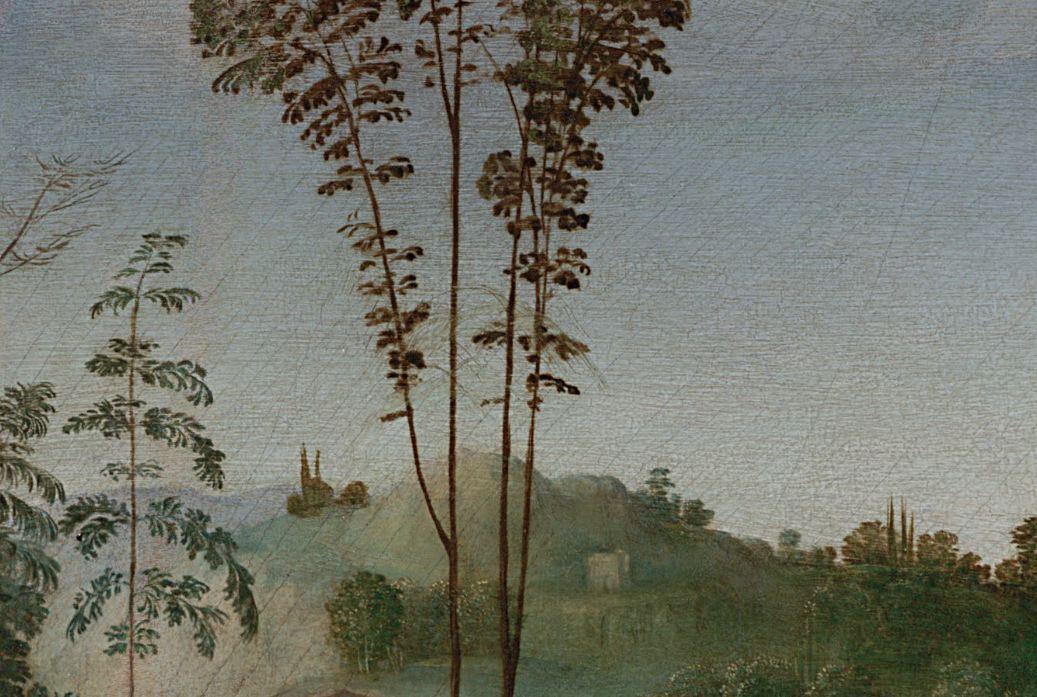 Raphaël. Vierge au chardonneret. Musée des Offices.