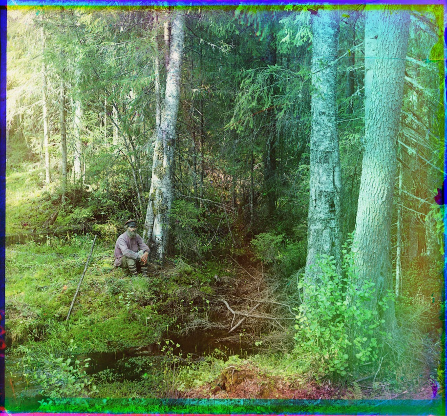 S.Procoudine-Gorsky. 1910  Source of the Zapadnaya Dvina River near the village of Karyakino, 3 versts from The Peno Lake, Tver Province, Ostashkov district.  Library of Congresss
