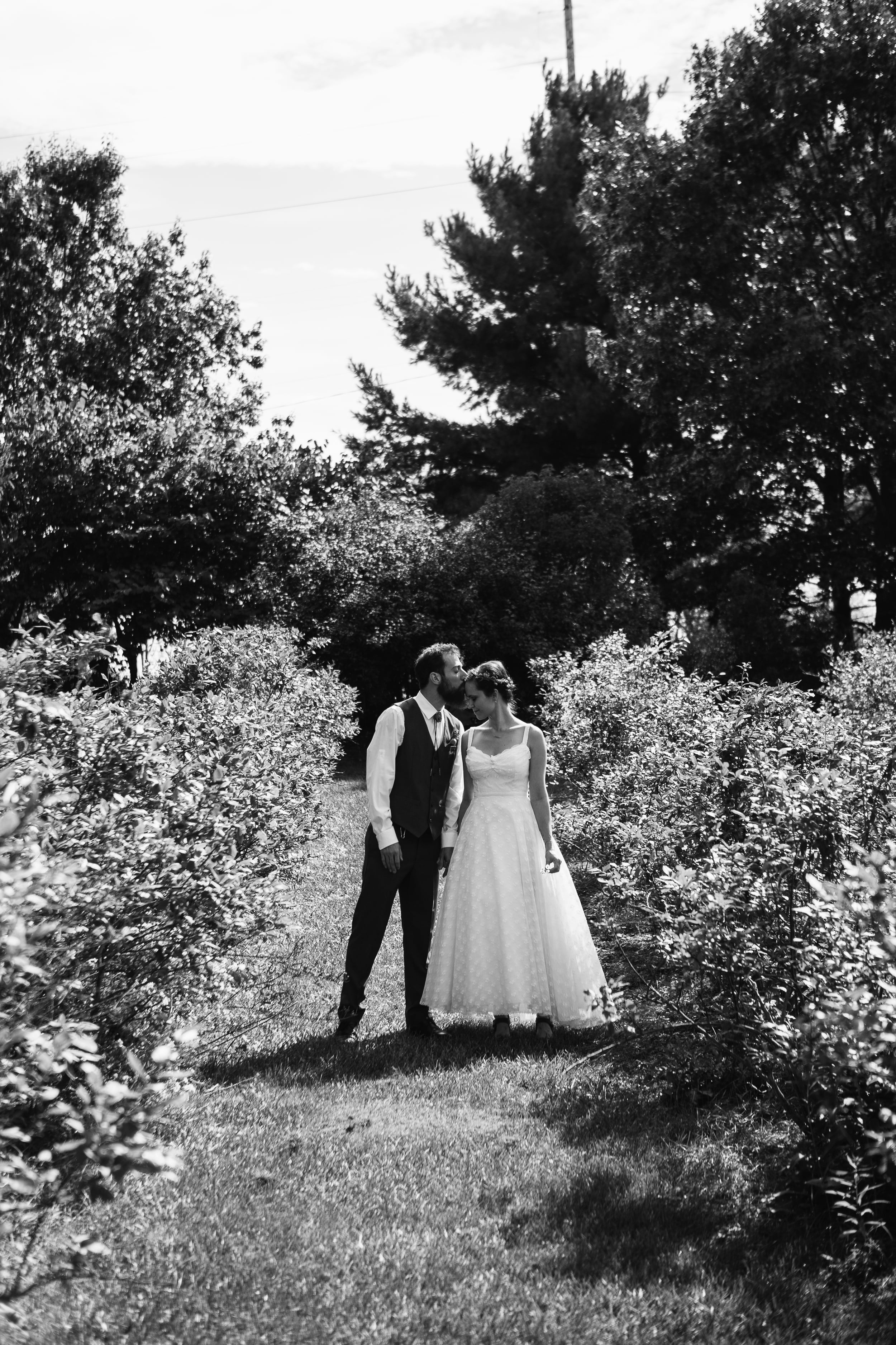 Carrie Hall Photography, Mohican Gardens,  Wedding Photographer