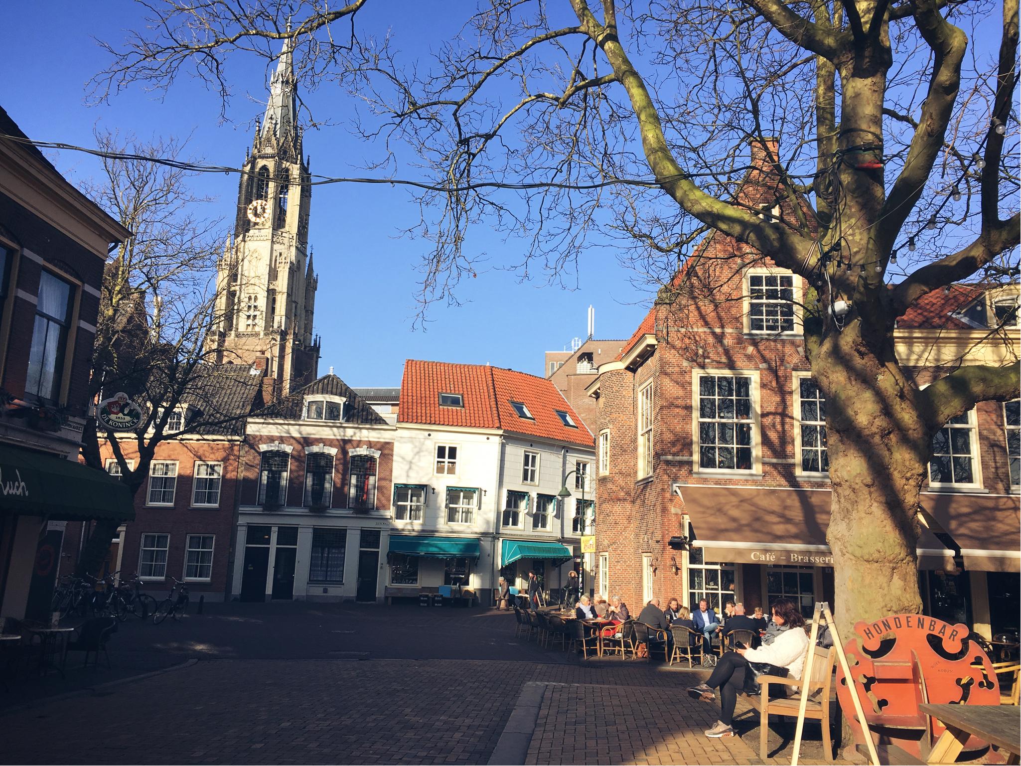 Delft -mercado dos animais (beestenmarkt)