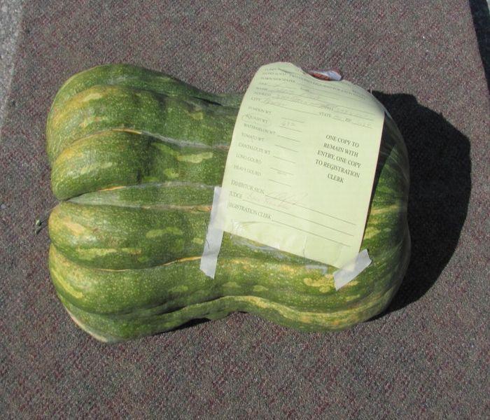 heavy gourd.jpg