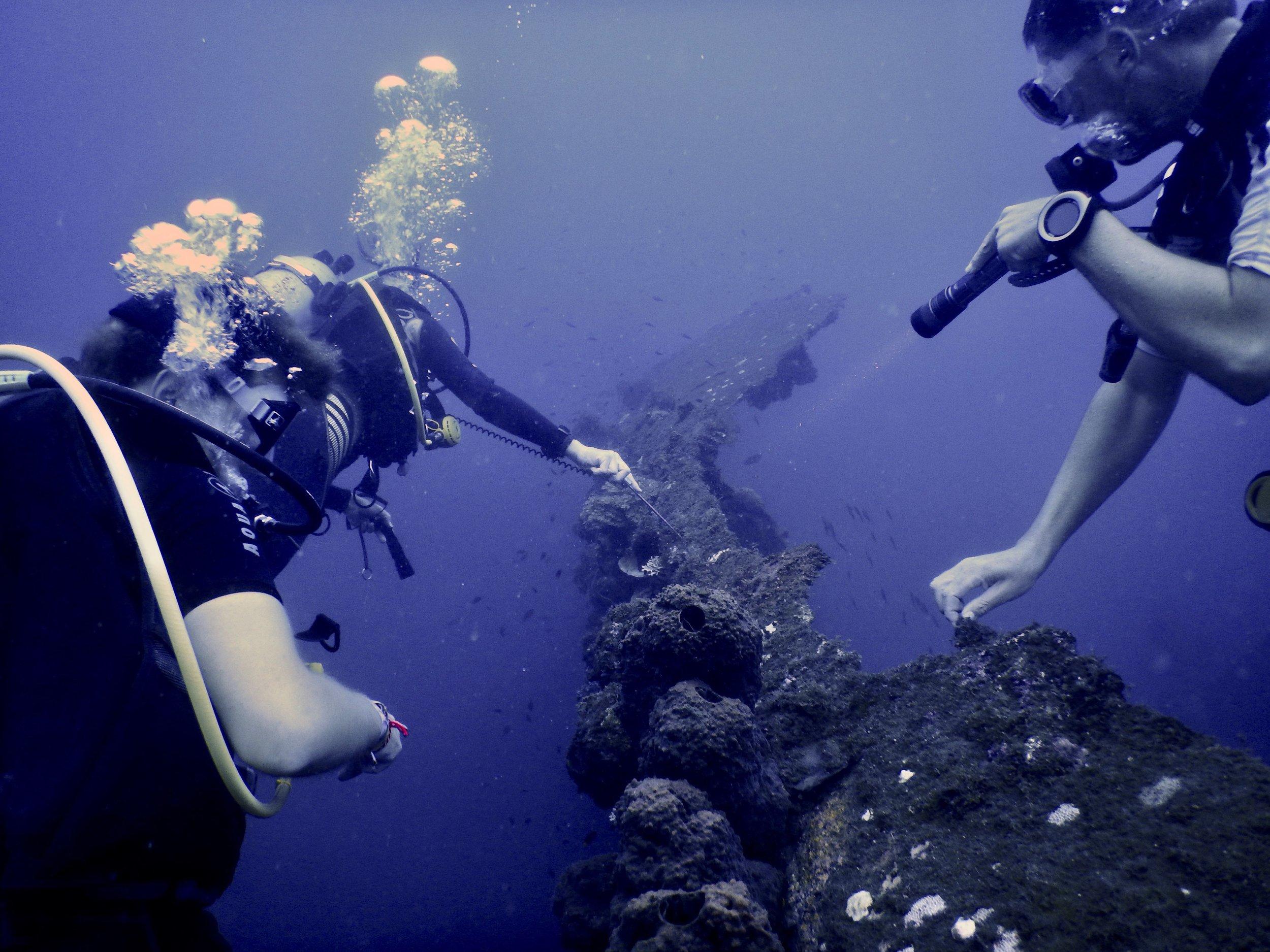 Flores, Akermi Dive resort (16).jpg
