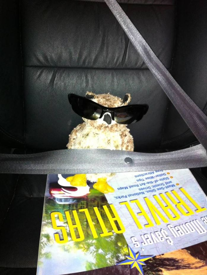 Osmond the Navigator.JPG