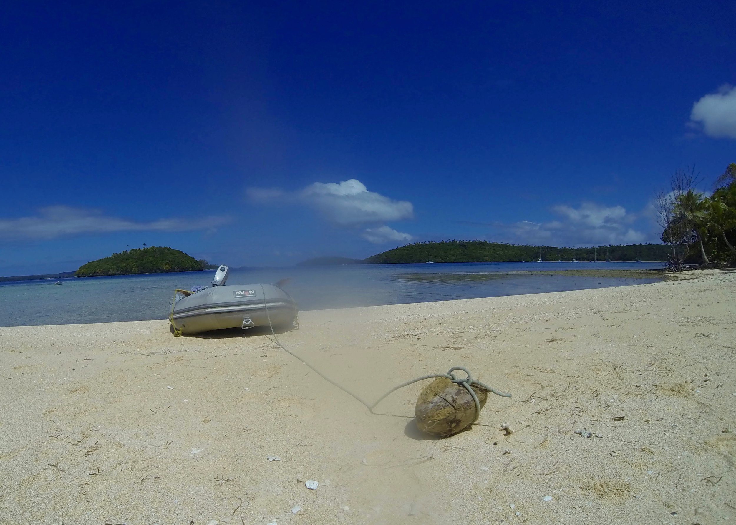 (Disclaimer: this is not my dinghy anchored to a coconut.)