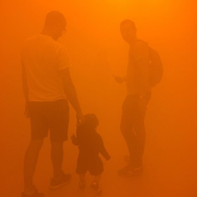 Great exhibition at Tate at the moment focus on climate and us as part of weather. Thing I liked best was giant wall of resources and sources of inspiration for his work #olafureliasson #inreallife #tatemodern #inspiration
