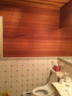 Bathroom - Gut Renovation