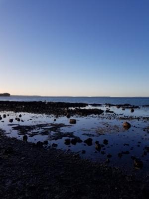 Milford Beach, Auckland New Zealand