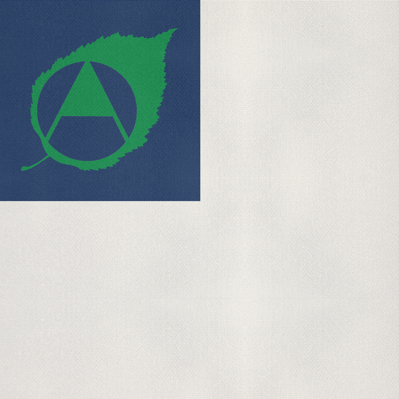 TEH-flag-option3.jpg