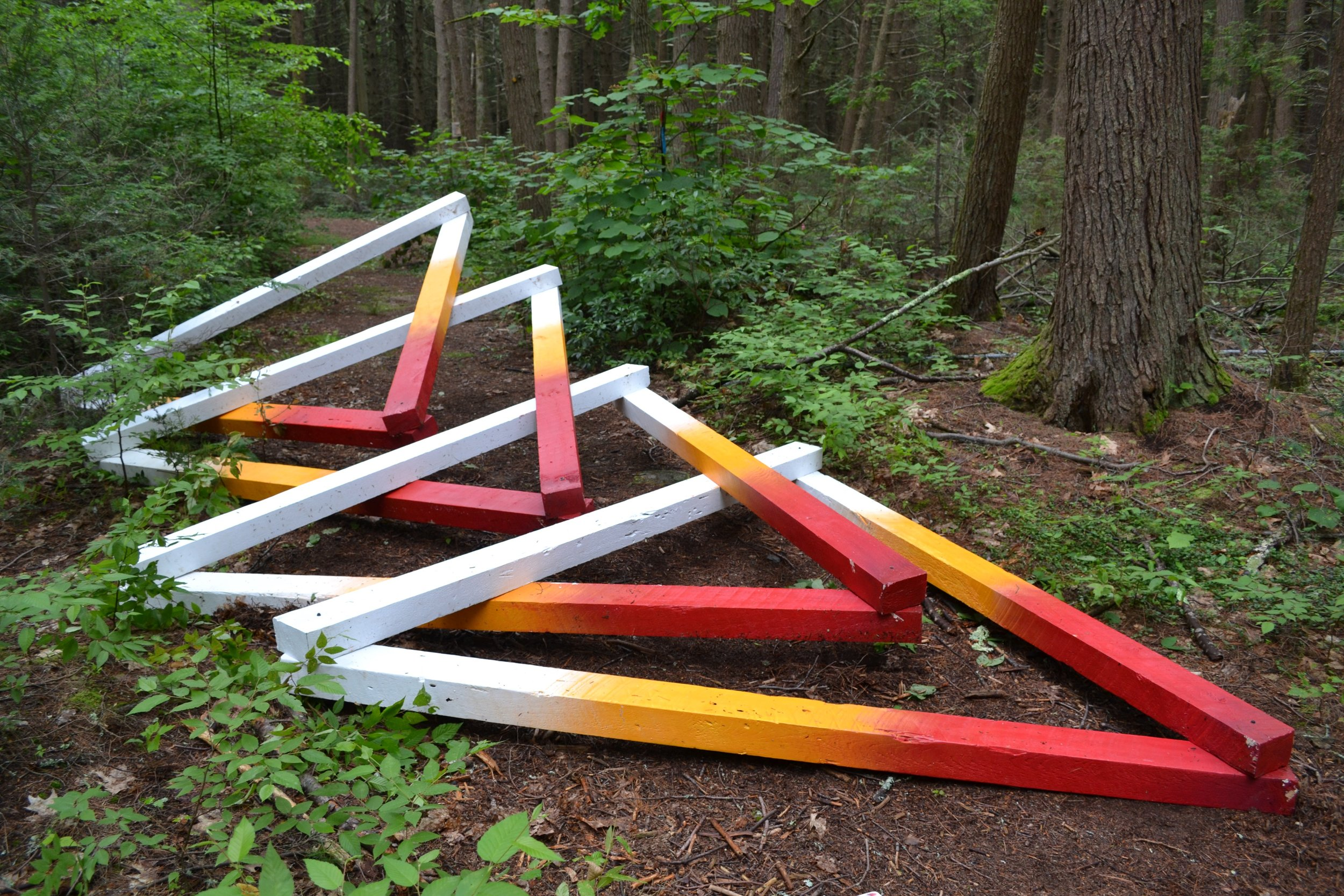 """Fast Forward Futures,"" Hemlock Hospice installation at Harvard Forest, wood, acrylic, and hardware, 4 x 8 x 22 feet, 2017. Collaborators: David Buckley Borden, Jack Byers, Salua Rivero, and Dr. Aaron Ellison."