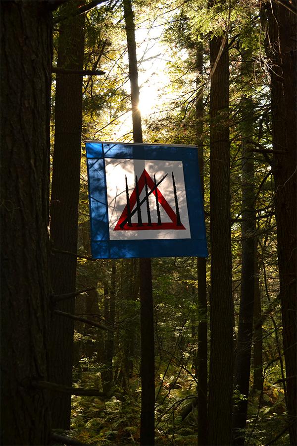 Sixth Extinction Flag, Hemlock Hospice Installation at Harvard Forest. Photo by Salua Rivero.