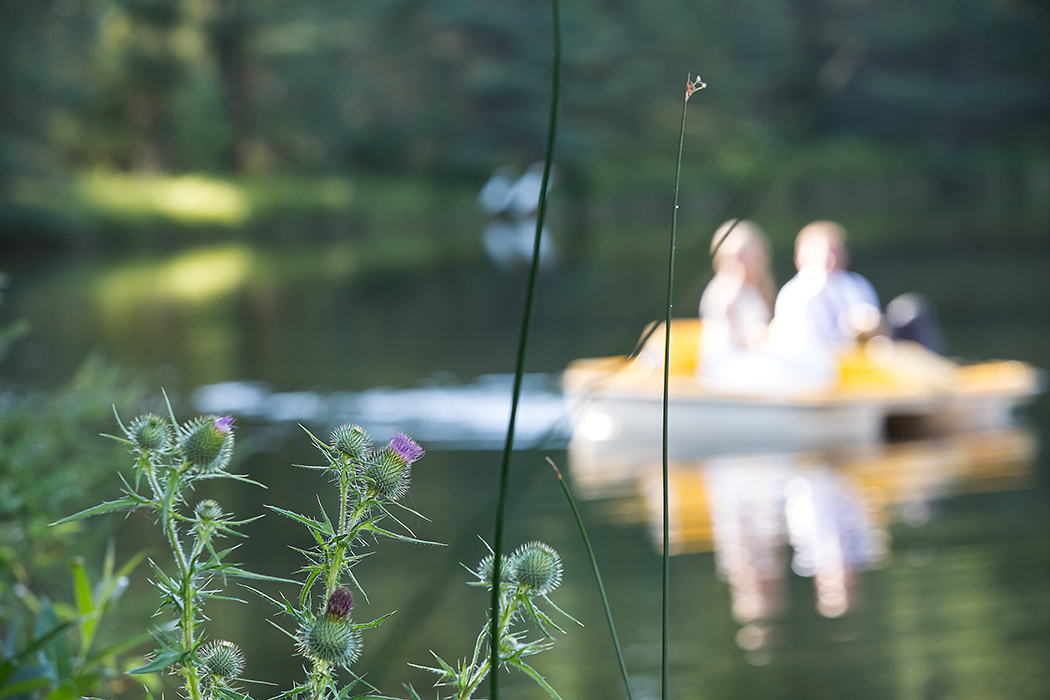 thistle boat(WEB).jpg