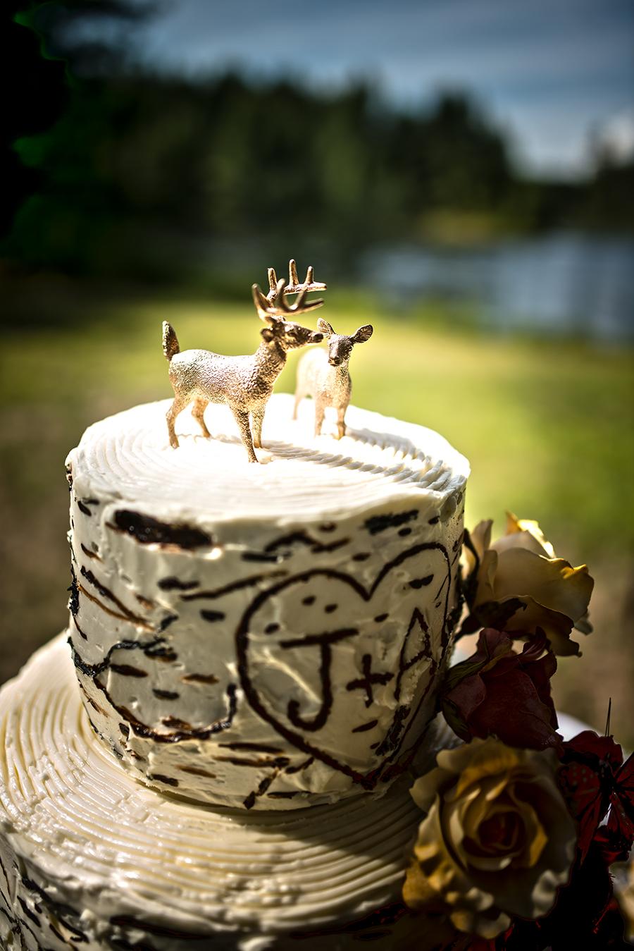 cake#1(WEB).jpg