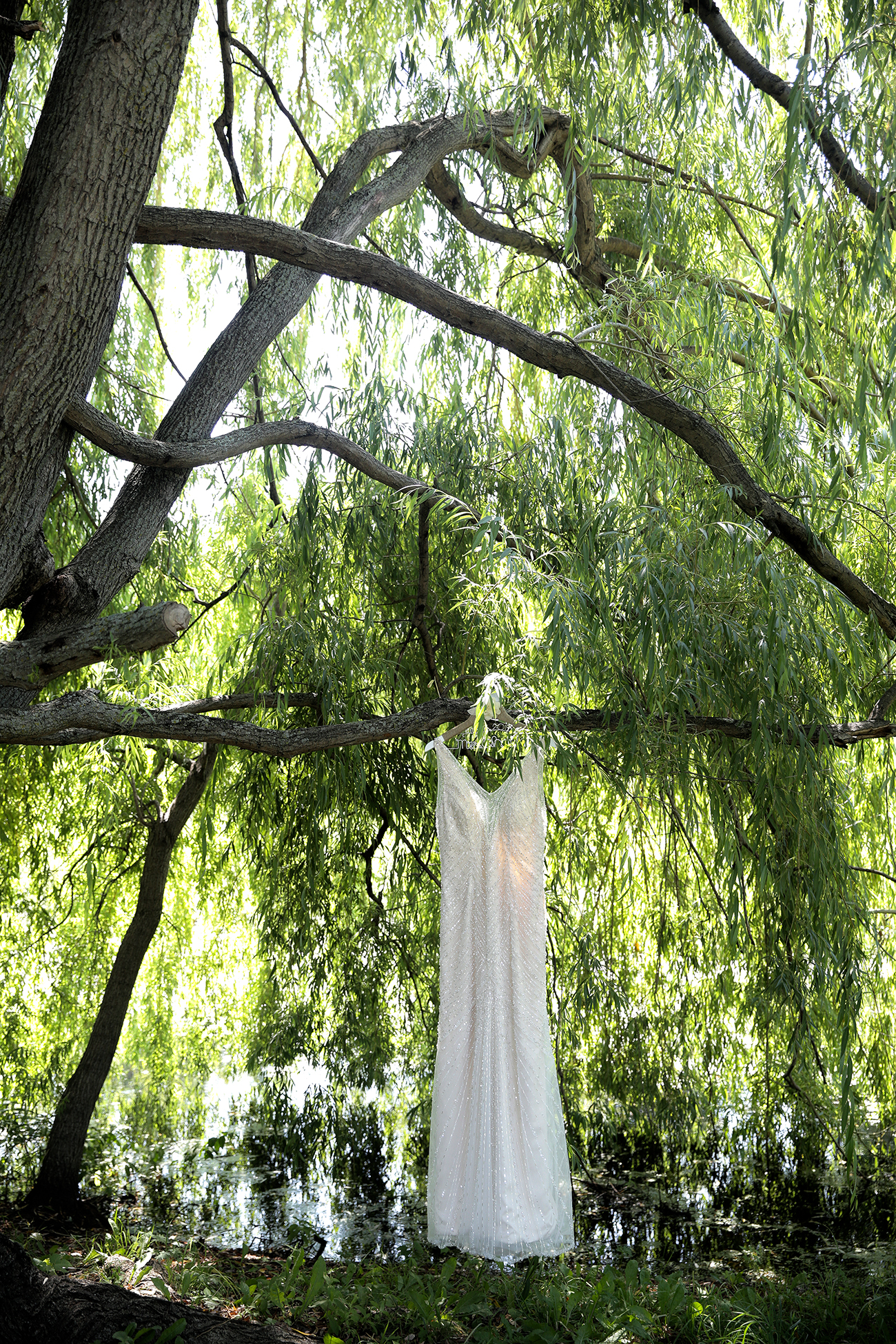 tree dress#7(WEB).jpg