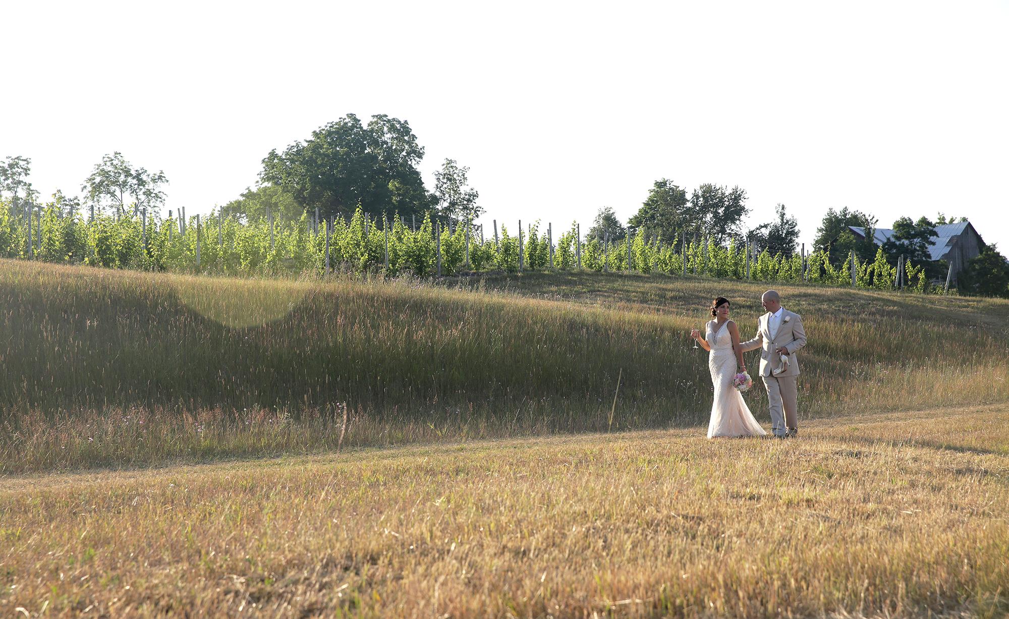walk the vineyard#3(WEB).jpg