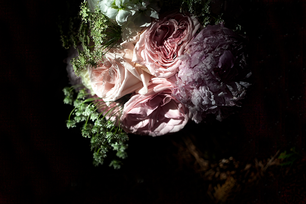 flowers shadow#2(WEB).jpg