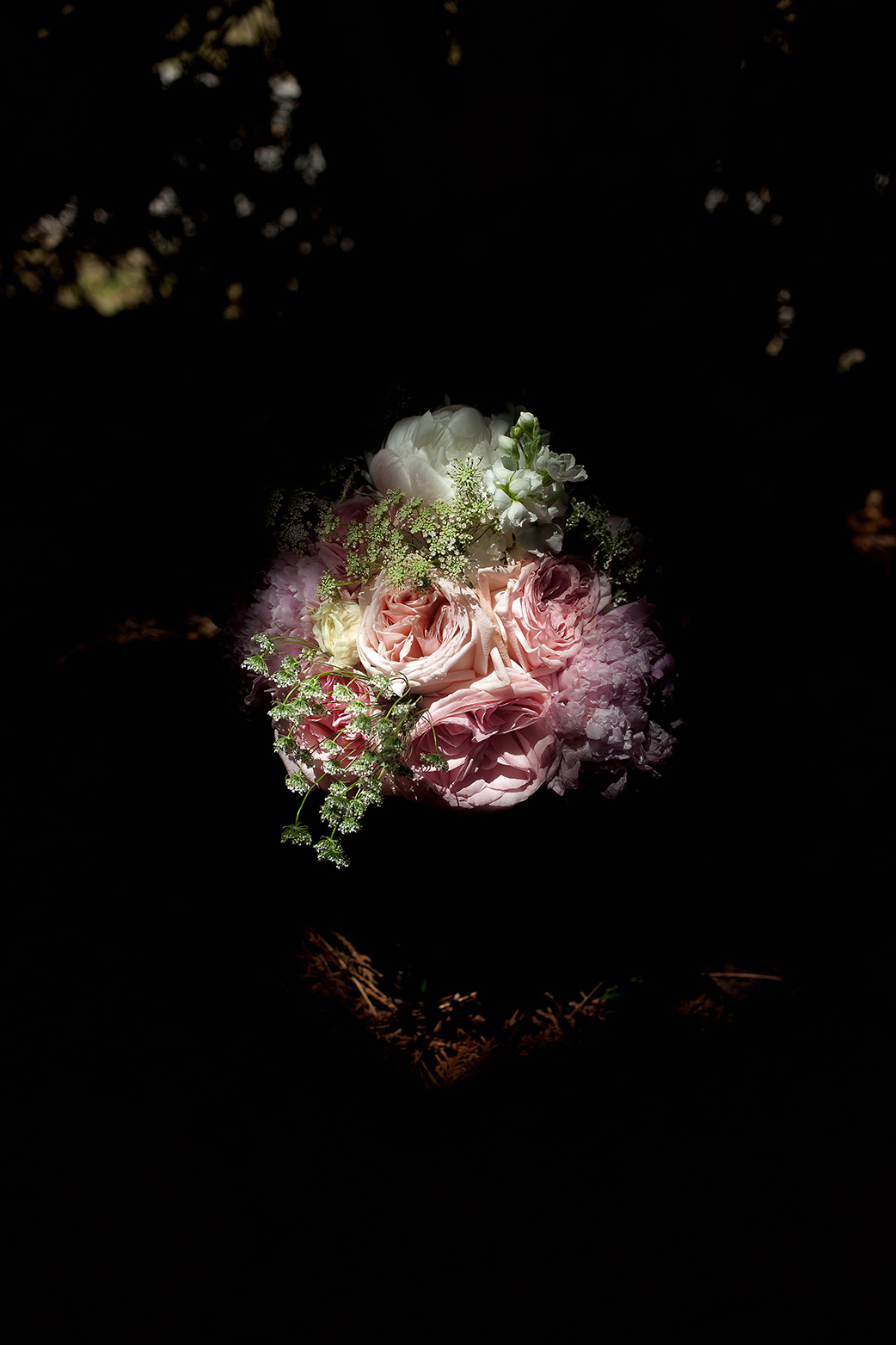 flowers shadow#3(WEB).jpg
