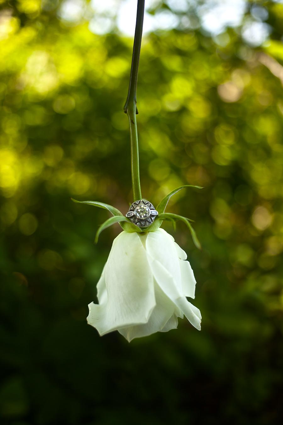 rose ring(WEB).jpg