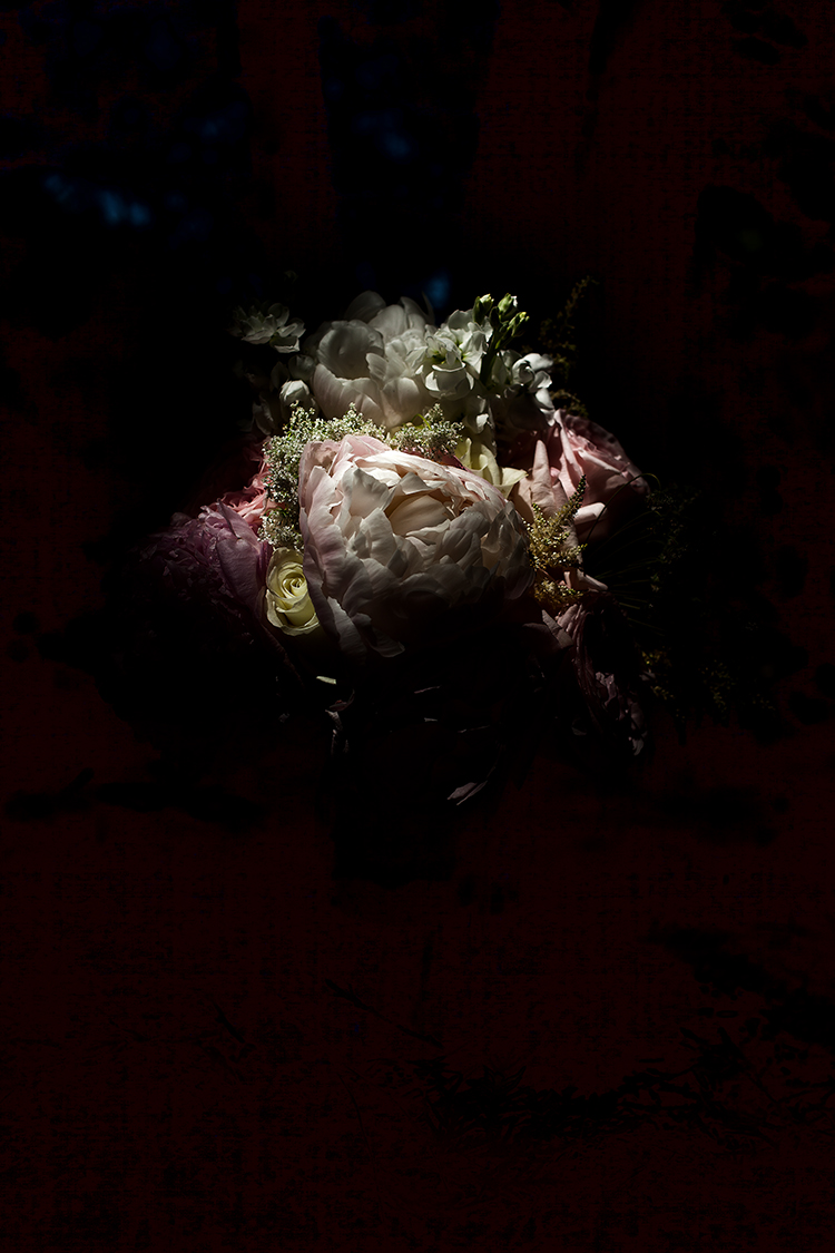 shadow flowers#1(WEB).jpg