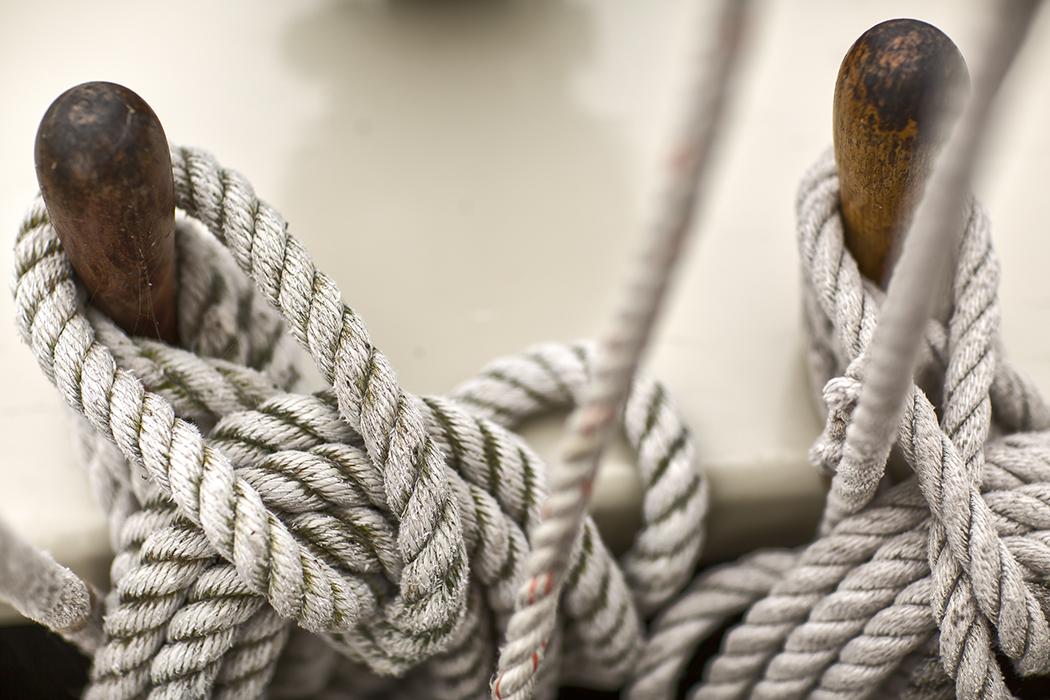 rope still(WEB).jpg