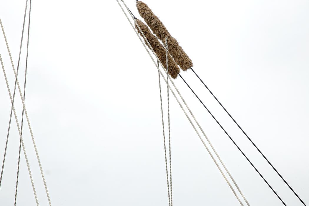 ropes#2WEB).jpg