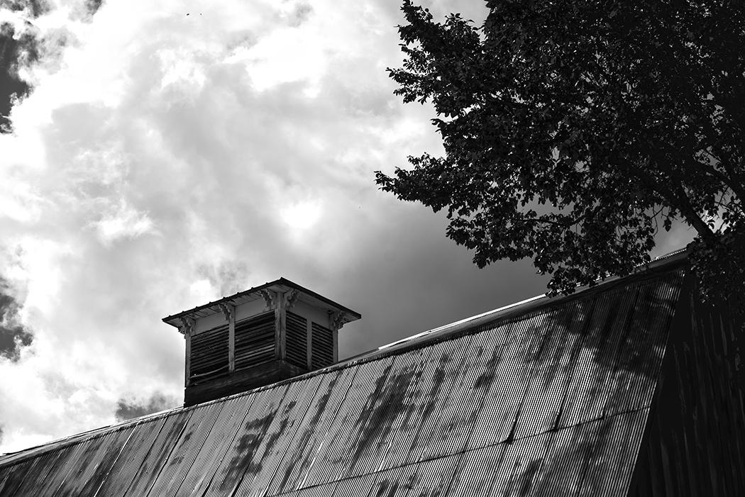 barn roof(WEB).jpg