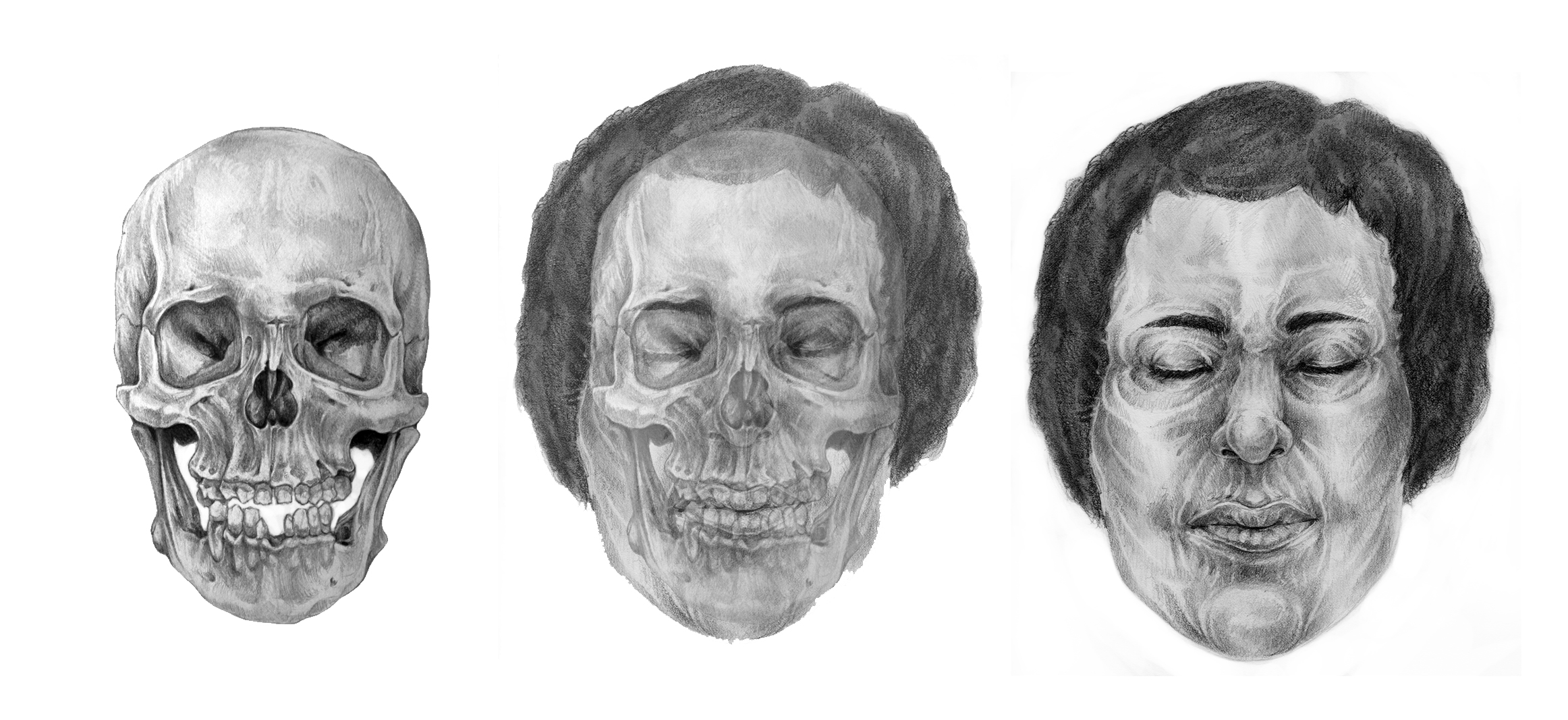 "Normal   0           false   false   false     EN-US   X-NONE   X-NONE                                                                              Forensic Facial Reconstruction  Reconstructive illustration based on research of a specimen from the anthropology department's collections.  In   collaboration with the Cleveland Museum of Natural History.    Exhibited:   •   2016 Ohio State Fair Fine Arts Exhibition in Columbus, OH   •   2015 AICUO EVA's Finalist Exhibition at Roy G Biv Gallery in Columbus, OH                                                                                                                                                                                                                                                                                                                                                                                                                                                                                                                                                                                                                                                                                                                                                                                   /* Style Definitions */  table.MsoNormalTable 	{mso-style-name:""Table Normal""; 	mso-tstyle-rowband-size:0; 	mso-tstyle-colband-size:0; 	mso-style-noshow:yes; 	mso-style-priority:99; 	mso-style-parent:""""; 	mso-padding-alt:0in 5.4pt 0in 5.4pt; 	mso-para-margin:0in; 	mso-para-margin-bottom:.0001pt; 	mso-pagination:none; 	mso-hyphenate:none; 	text-autospace:ideograph-other; 	font-size:12.0pt; 	font-family:""Times New Roman"",serif; 	mso-bidi-font-family:Mangal; 	mso-font-kerning:1.5pt; 	mso-fareast-language:ZH-CN; 	mso-bidi-language:HI;}"