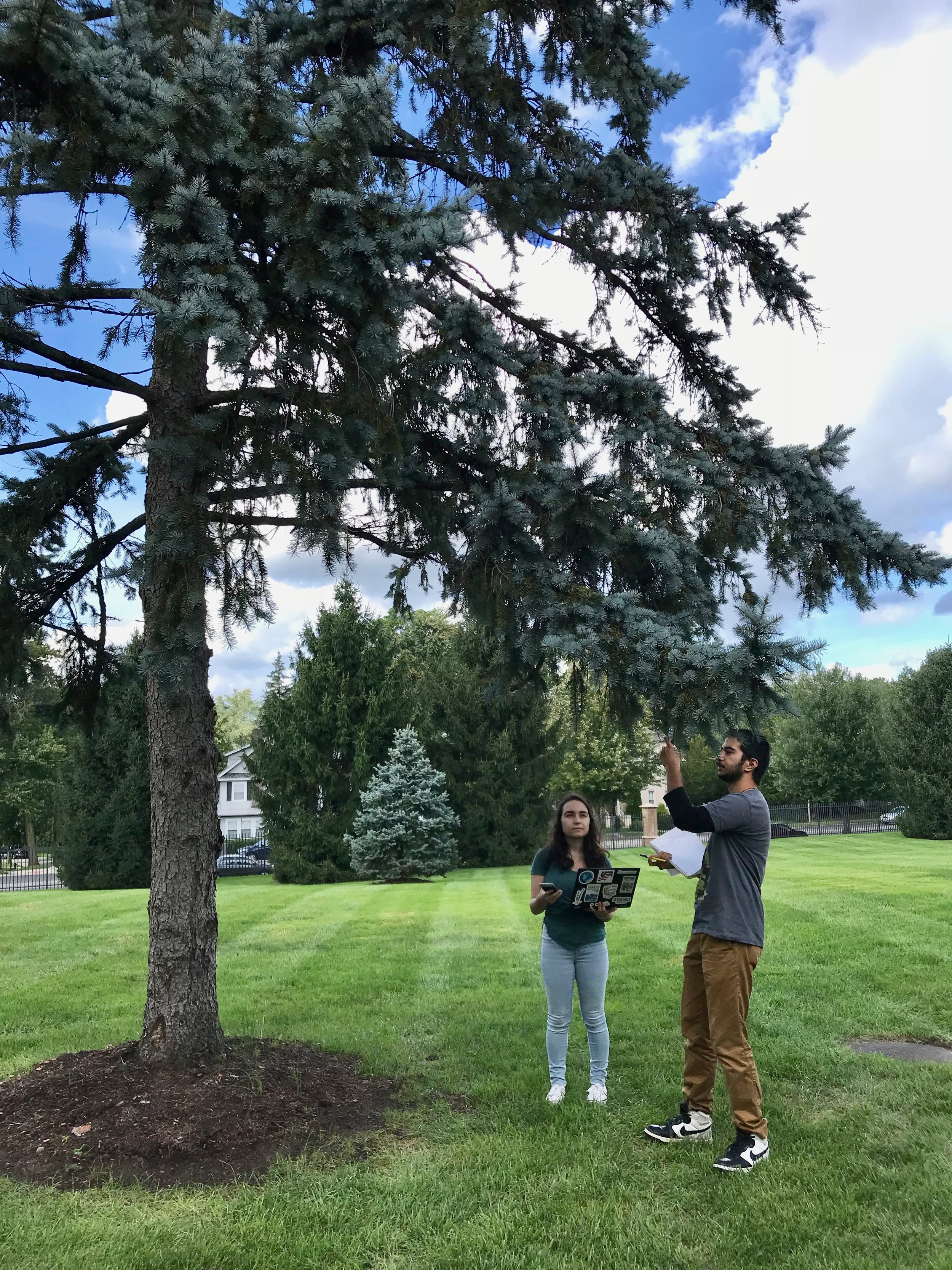 Seton Hall students Saveria Antonacci and Maharsh Barot identifying trees on campus.
