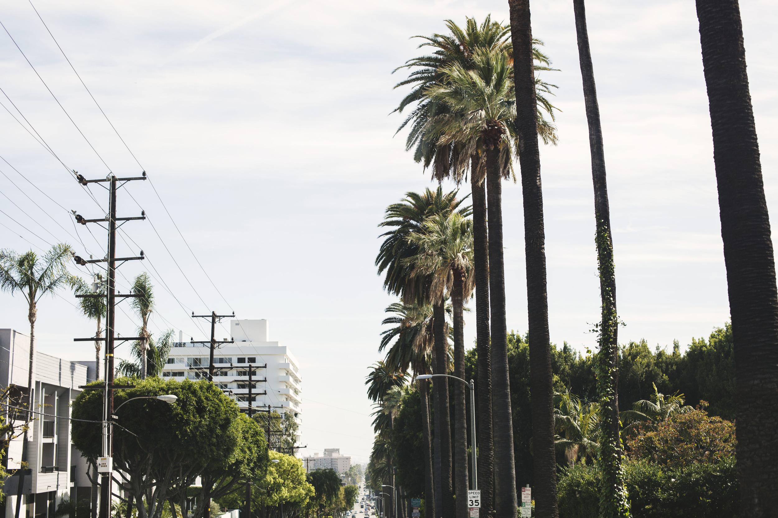 California_March_2016_Spread_13.jpg