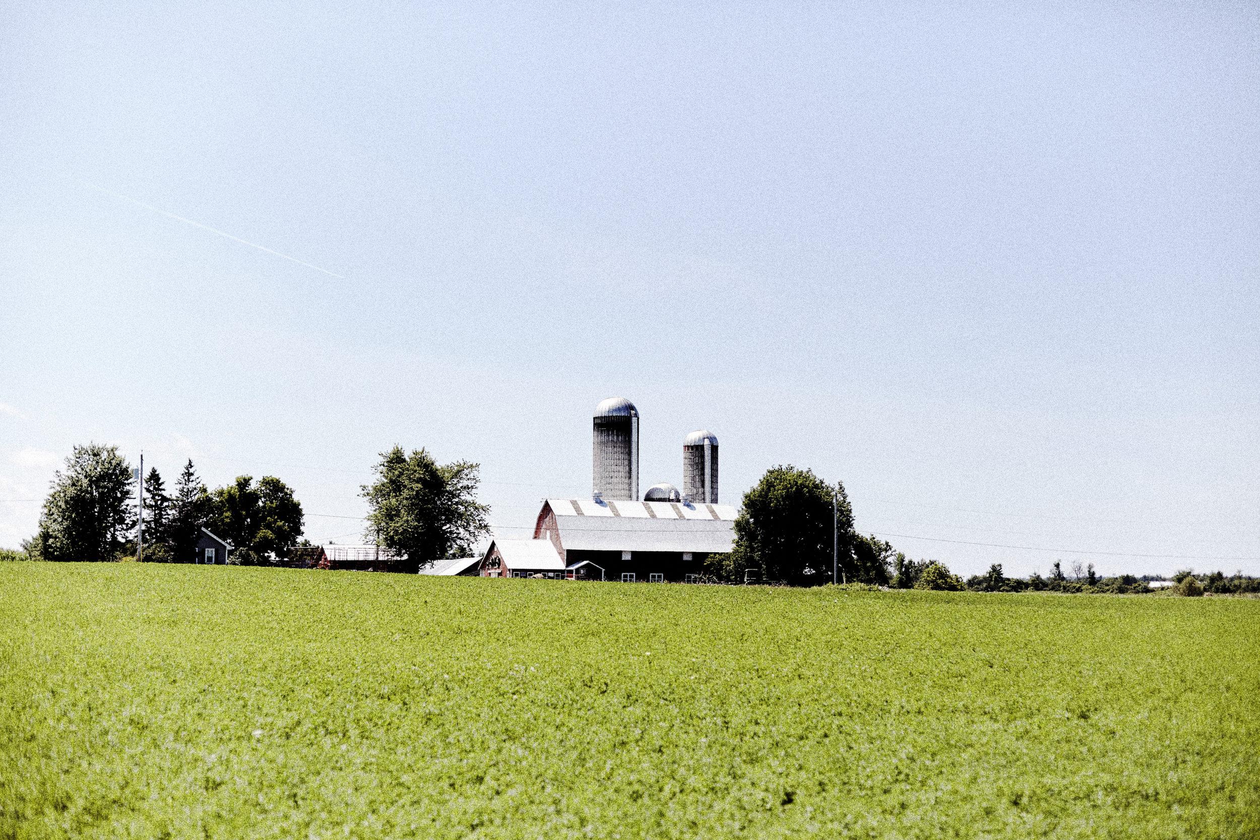 Farm_Chris_Lee_108.jpg