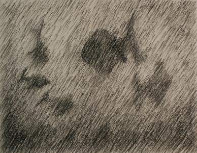 arceren-vissen1.jpg