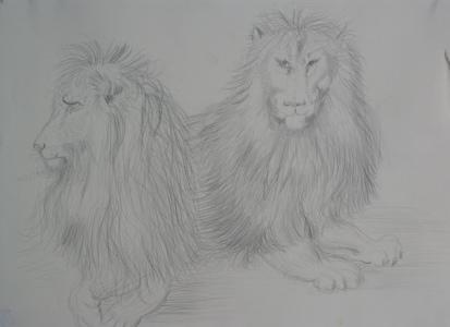 leeuwen.jpg