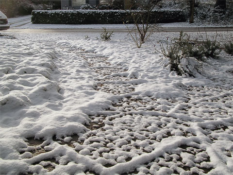 Snow on front walkway