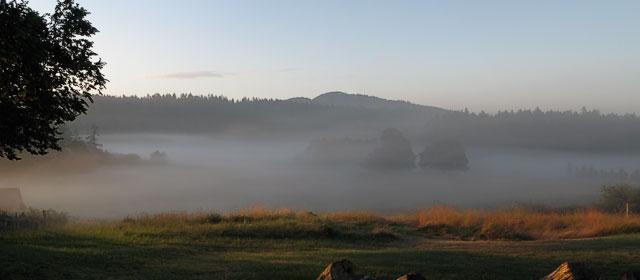 Morning fog over Turtleback Farm