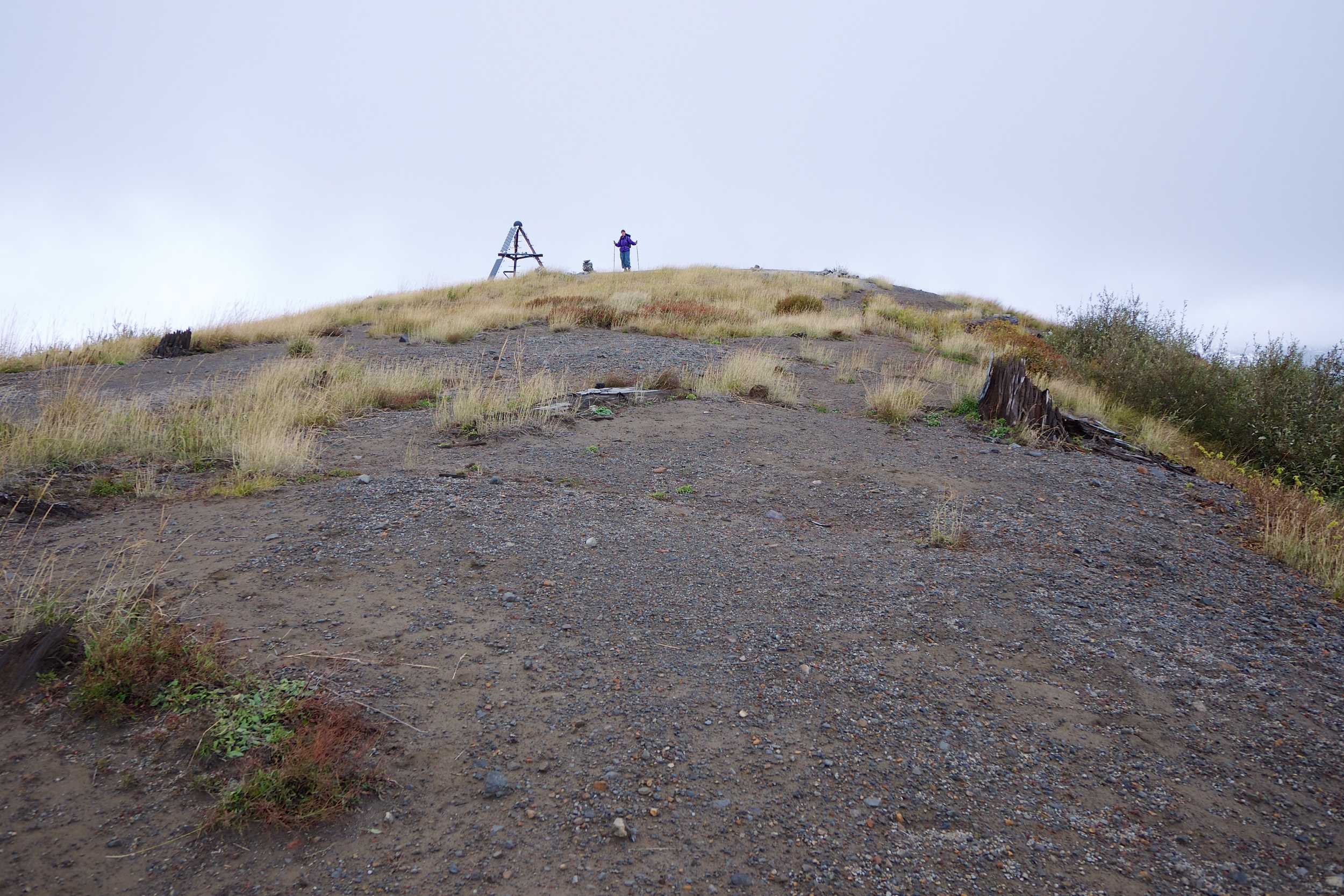 Top of Harry's Ridge